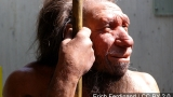 Genes from Neanderthals may be causing health problems for modern man